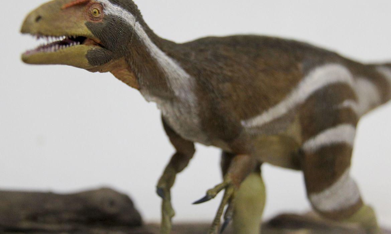 Apresentação da  descoberta de um  novo fóssil de dinossauro: o Aratasaurus museunacionali.