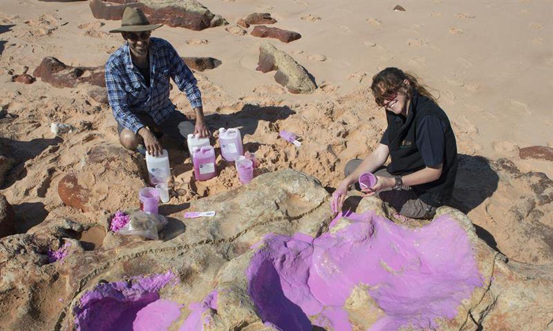 Cientistas criam molde de silicone na pegada de um dinossauro. Grupo de pesquisadores identificou 150 pegadas de 21 espécies de dinossauros em uma área do noroeste da Austrália