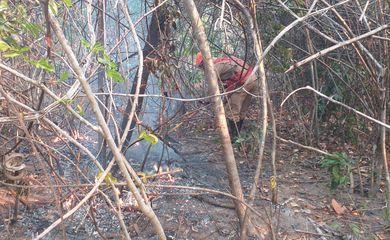 Combate ao incêndio no Parque Nacional da Chapada dos Veadeiros (GO).