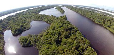 Anavilhanas: segundo maior arquipélago de águas fluviais do mundo