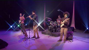 Quarteto Jambu reúne talentos individuais com repertório próprio