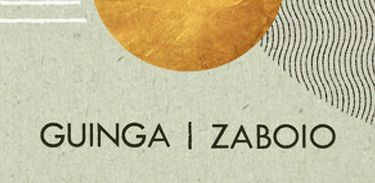 Álbum Zaboio