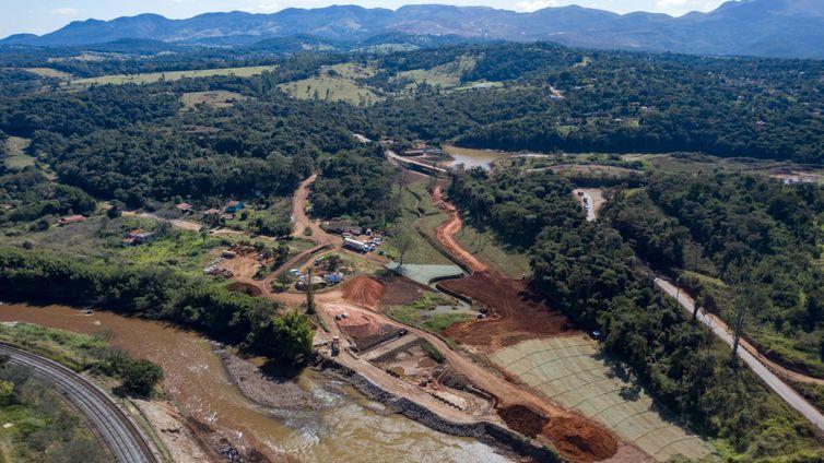 Processo de reflorestamento em 2020