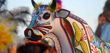 O Complexo Cultural do Bumba Meu Boi do Maranhão foi consagrado como Patrimônio Cultural Imaterial da Humanidade