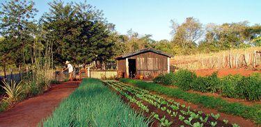 Horta; agricultura familiar