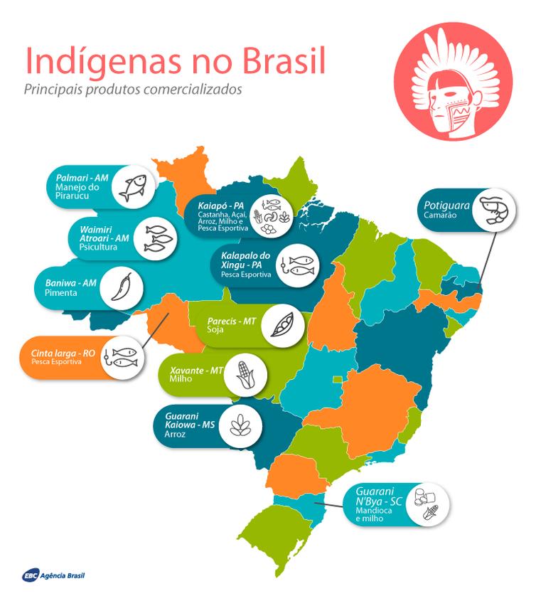 Mapa Indígenas NOVO