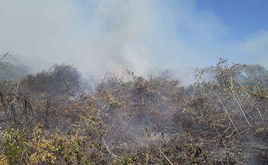 Incêndio atinge o Pantanal no mês de julho.