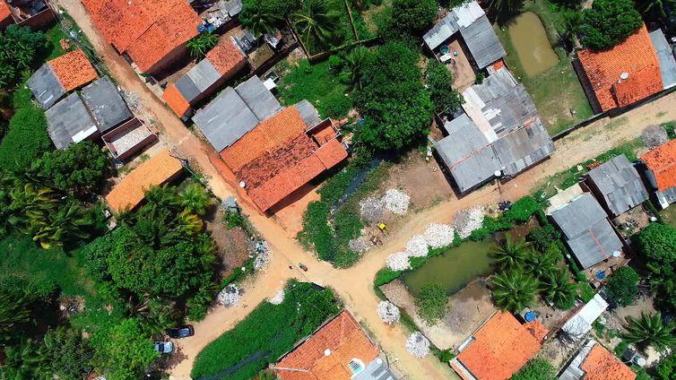 Maranhão é um dos estados com mais casos de leishmaniose visceral