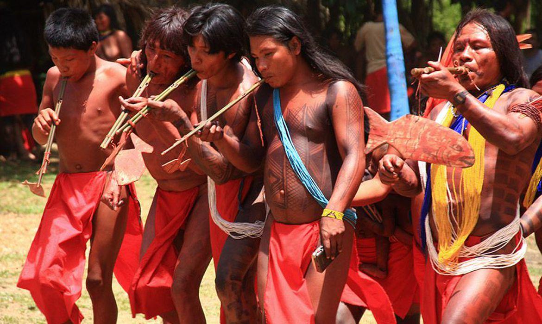 Índios, waiãpi, amapá
