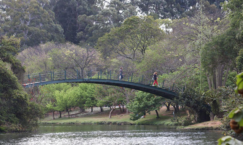 Parque do Ibirapuera completa 65 anos.