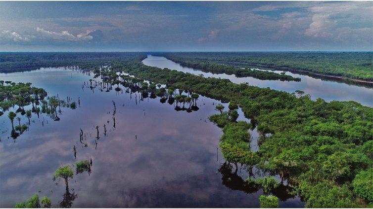 Lago Santo Antônio no Parque Nacional do Jaú