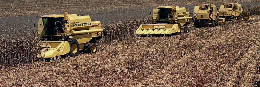 A colheita de grãos