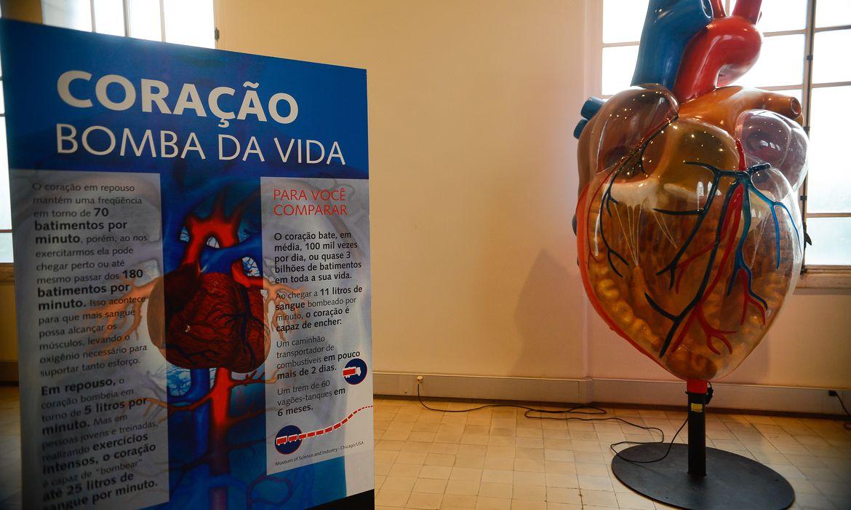 Rio de Janeiro - Exposição Vias do Coração, no Museu da Vida (castelo da Fiocruz), divulga o conhecimento cardíaco como forma de estimular a prevenção das doenças cardiovasculares  (Tomaz Silva/Agência Brasil)