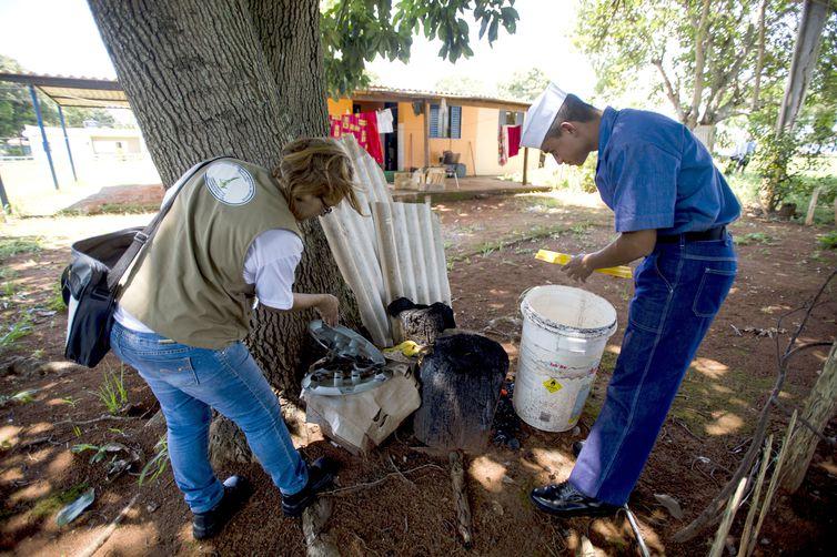 Brasília - Cerca de 100 militares da Marinha e agentes da defesa civil recebem treinamento para  apoiar o combate ao mosquito Aedes aegypti no Distrito Federal (Marcelo Camargo/Agência Brasil)