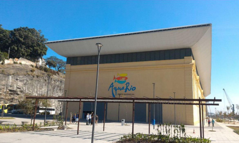 Aquário do Rio começa a vender ingressos pela internet | Agência ...