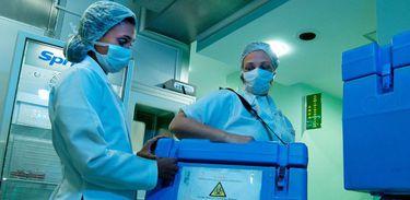 Transplante de orgãos