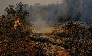 Teste com retardante para combater incêndios no Pantanal