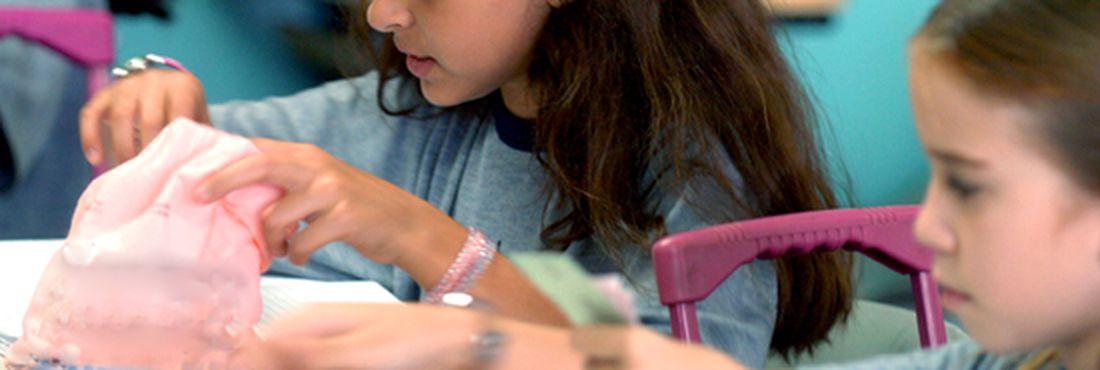 Estudantes da educação básica fazem exame do sistema nacional de avaliação