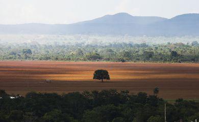 Alto Paraíso de Goiás (GO) -  Área de cerrado desmatada para plantio no município de Alto Paraíso (Marcelo Camargo/Agência Brasil)